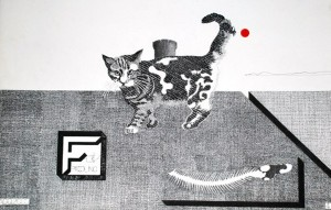 piccolinoopere_lotto_a_1_gatto